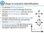 steps in scenario identification