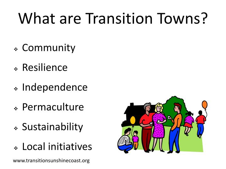 What are transition towns1