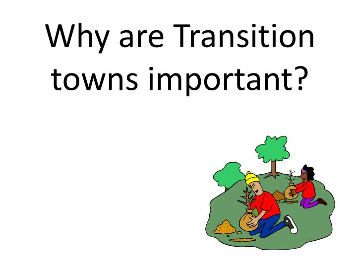 Why are Transition towns important?