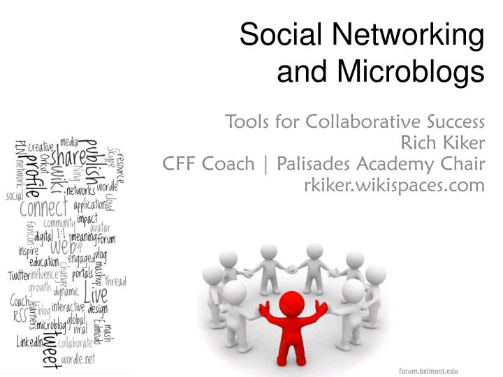 social networking and microblogs n.