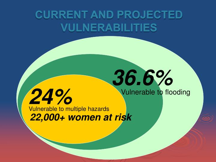 Current and Projected Vulnerabilities