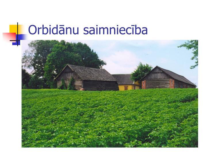 Orbidānu saimniecība