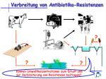 verbreitung von antibiotika resistenzen