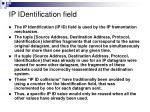 ip identification field