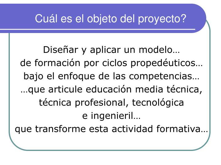 Cuál es el objeto del proyecto?