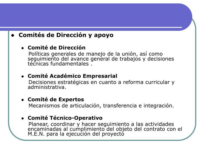 Comités de Dirección y apoyo