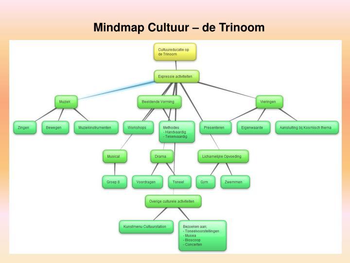 Mindmap Cultuur – de Trinoom