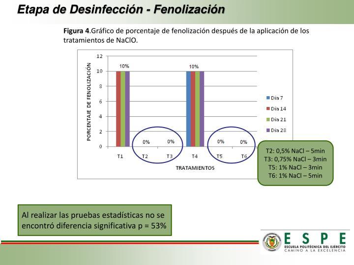 Etapa de Desinfección - Fenolización