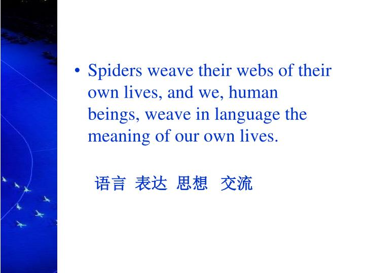 Spiders weave their webs of their own lives, and we, human beings, weave in language the meaning of our own lives.