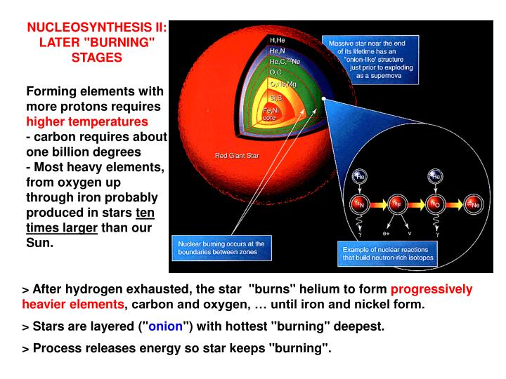 "NUCLEOSYNTHESIS II: LATER ""BURNING""  STAGES"