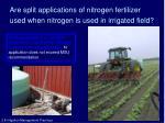 are split applications of nitrogen fertilizer used when nitrogen is used in irrigated field