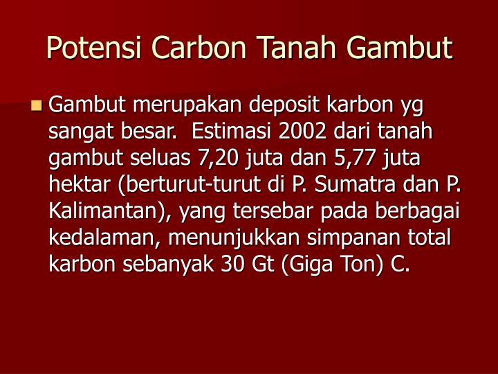 Potensi Carbon Tanah Gambut
