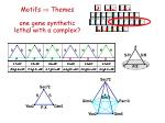 motifs themes one gene synthetic lethal with a complex