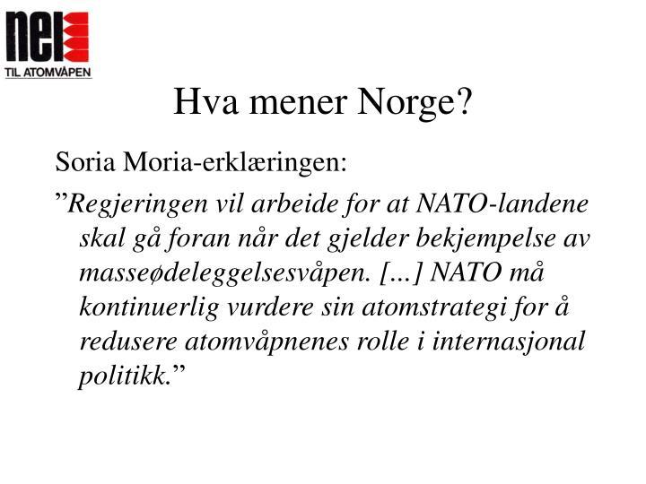 Hva mener Norge?