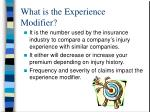 what is the experience modifier