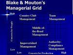 blake mouton s managerial grid