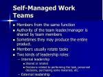 self managed work teams