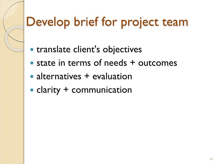 Develop brief for project team