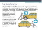 magnitudes vectoriales1