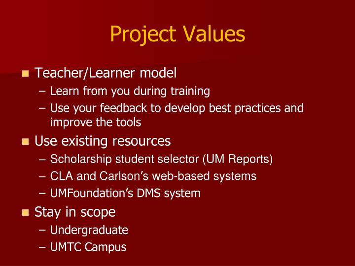 Project Values