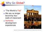why go global