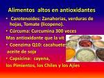 alimentos altos en antioxidantes