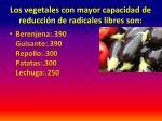 los vegetales con mayor capacidad de reducci n de radicales libres son2