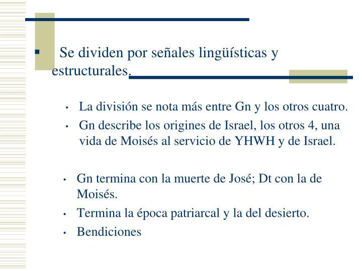 Se dividen por señales lingüísticas y estructurales.