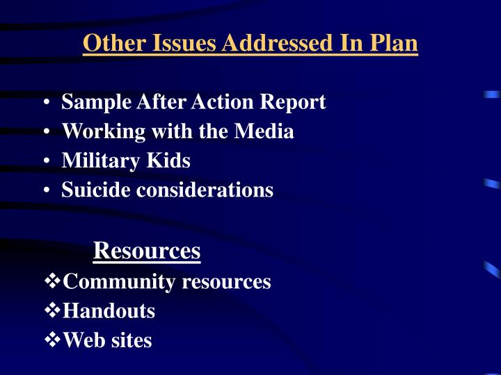 Other Issues Addressed In Plan