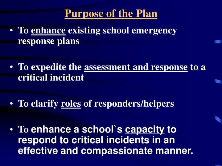 Purpose of the Plan
