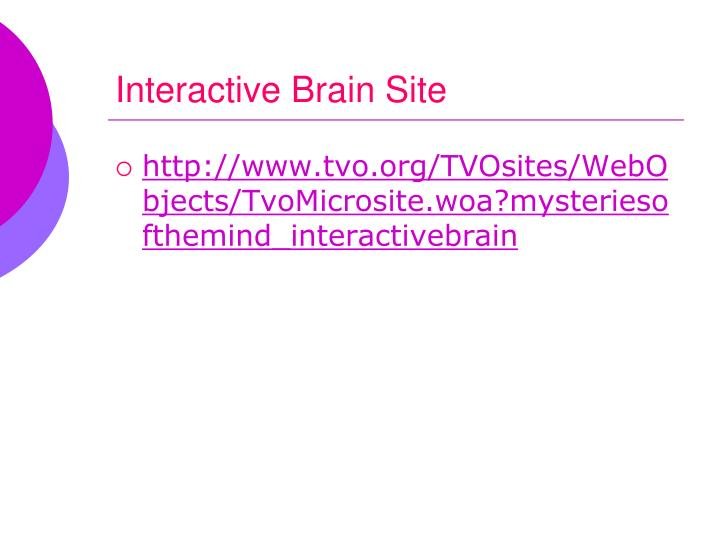 Interactive Brain Site