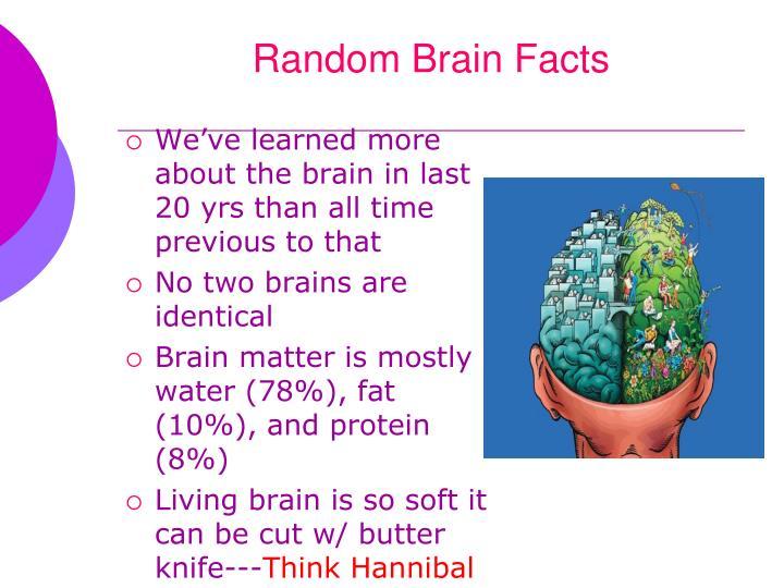 Random brain facts1