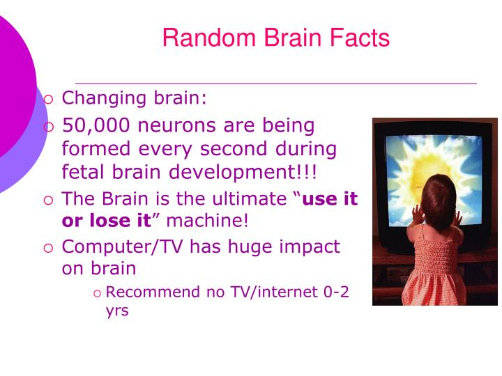 Random Brain Facts