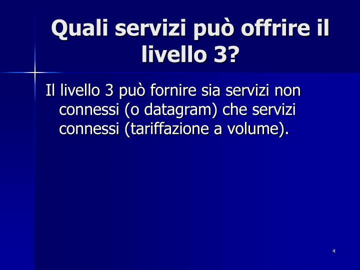 Quali servizi può offrire il livello 3?