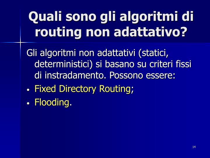 Quali sono gli algoritmi di routing non adattativo?