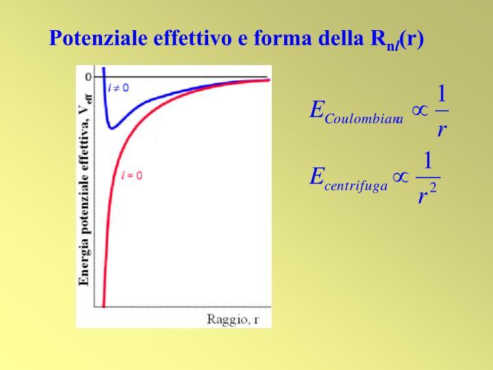 Potenziale effettivo e forma della R