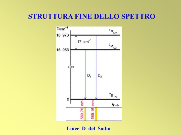 STRUTTURA FINE DELLO SPETTRO