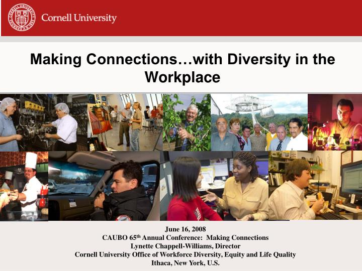 making connections with diversity in the workplace n.