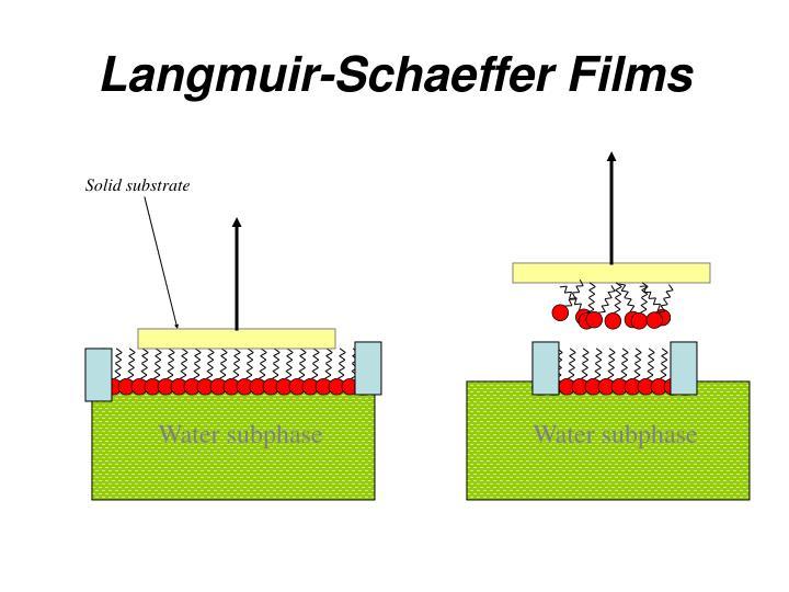 Langmuir-Schaeffer Films