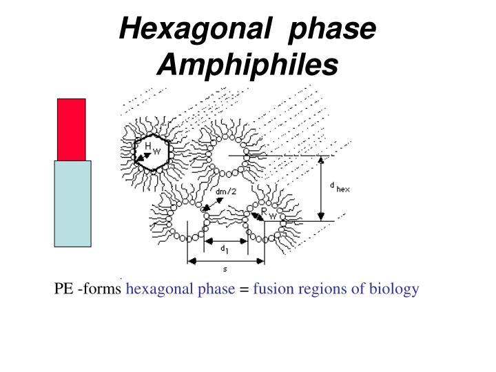 Hexagonal  phase Amphiphiles