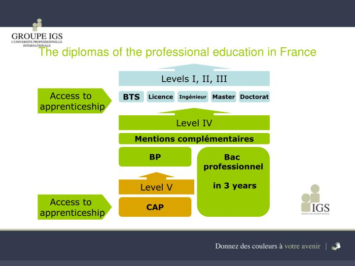 The diplomas of the professional education in France