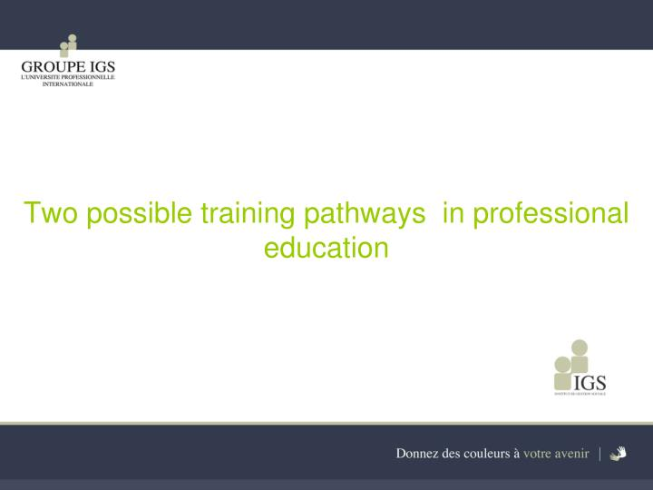 Two possible training pathways  in professional education