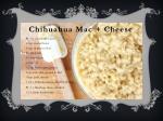 chihuahua mac cheese