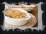chihuahua mac cheese1