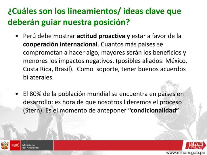¿Cuáles son los lineamientos/ ideas clave que deberán guiar nuestra posición?