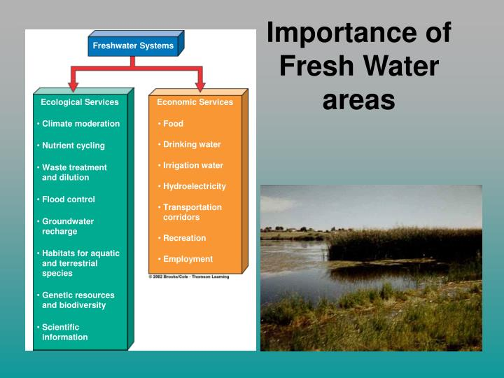 Importance of Fresh Water areas