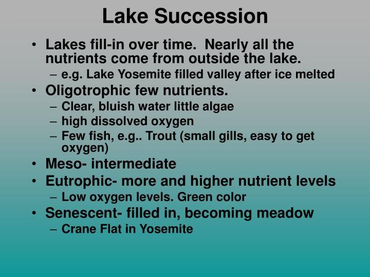 Lake Succession