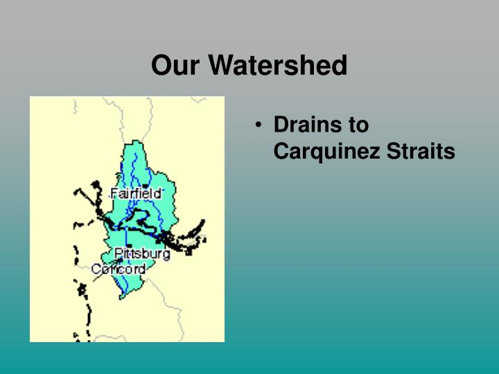 Our Watershed