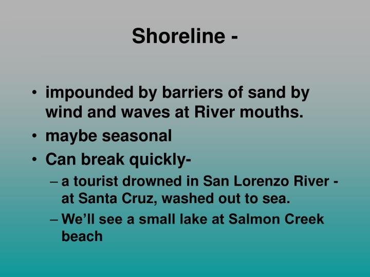 Shoreline -
