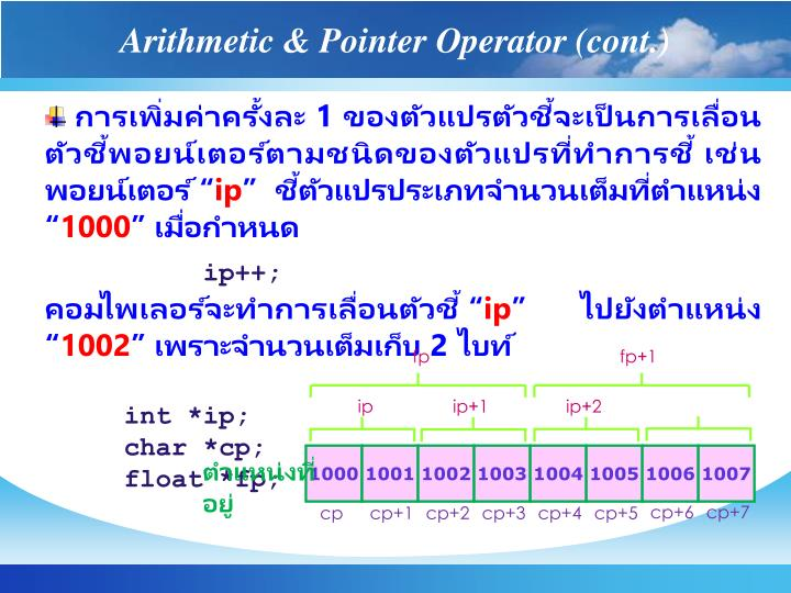 Arithmetic & Pointer Operator (cont.)